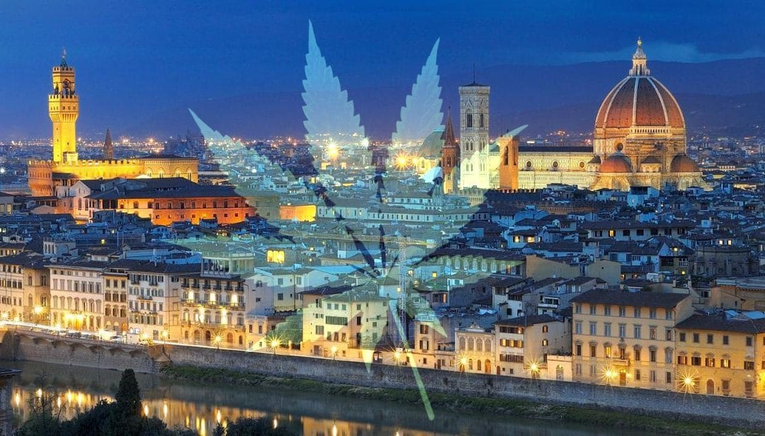 Erba CBD legale a Firenze: ecco dove trovarla